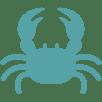 crabe - Nos produits